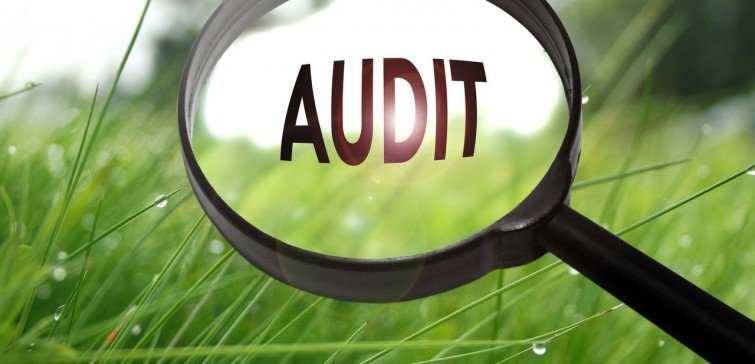 National and International Auditing